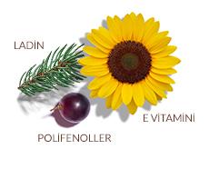 Patentli antioksidan kompleks